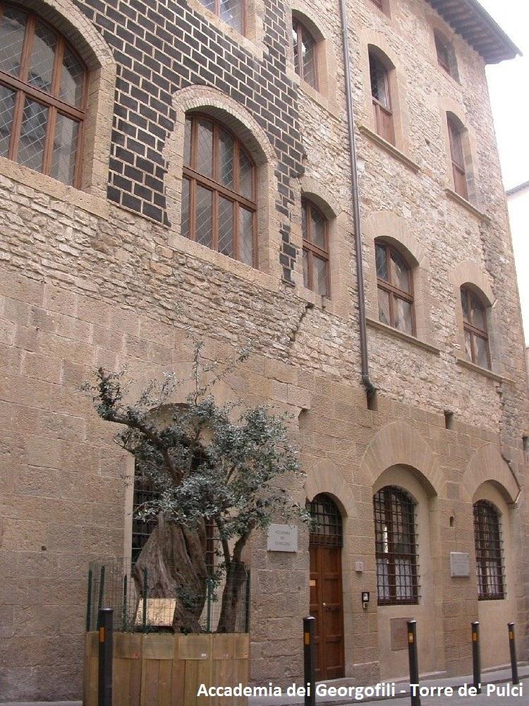 Accademia dei Georgofili - Torre de' Pulci