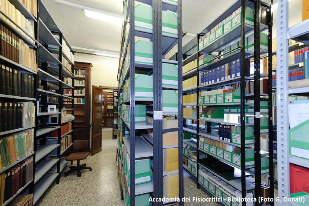 Biblioteca Fisiocritici-Foto G. Donati 2011_075_pat